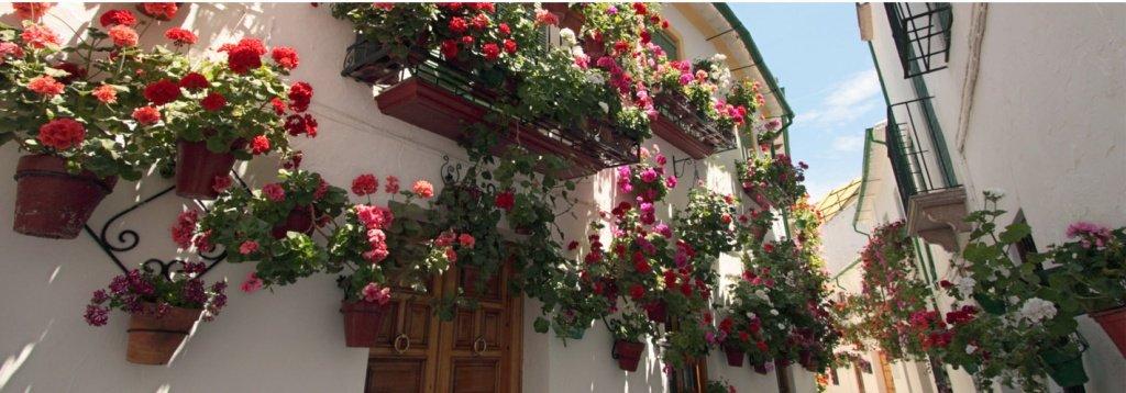 Vacaciones en furgoneta: una ruta directa a la Pasión de la Semana Santa Andaluza
