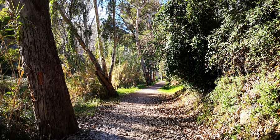 Ruta del agua de Chelva: Un paseo divertido y refrescante